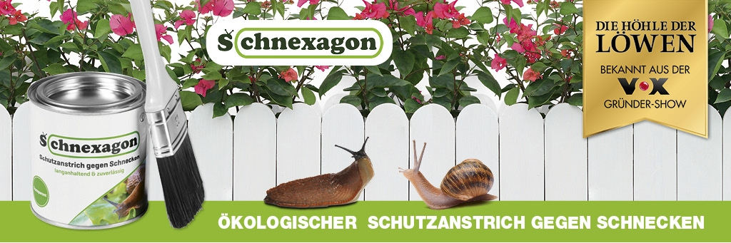 Schnexagon